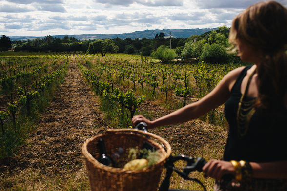 Sonoma Valley Cyclery rents bikes with baskets, perfect for picnic provisions