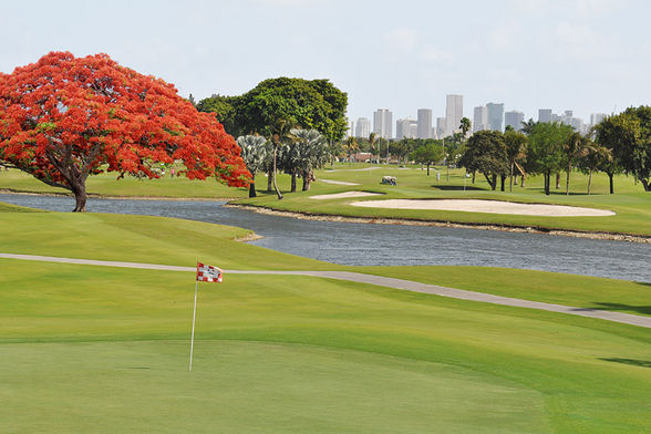 International Links/Melreese Country Club, Miami
