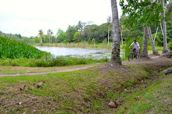 Mountain biking on Pulau Ubin, Singapore