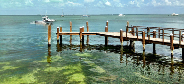 Dock and ocean view in Key Largo, Florida