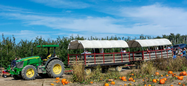 It's the season for apple cider, cozy sweaters, and pumpkin everything. Why not take a break from the rush of city life and visit one of these farms, cider mills, or orchards for some outdoor autumnal fun | WhereTraveler