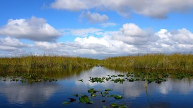 Miami residents have the perfect place for an outdoor interlude: Everglades National Park   WhereTraveler